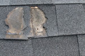 roof secure damaged tiles